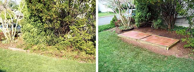 Before and after a yard cleanup