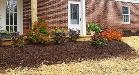 Newly installed plantings